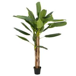 Bananenbaum künstlich