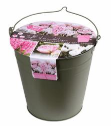 Eimer bepflanzt mit Blumenzwiebeln