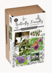 Blumenmischung Schmetterlingsfreundlich